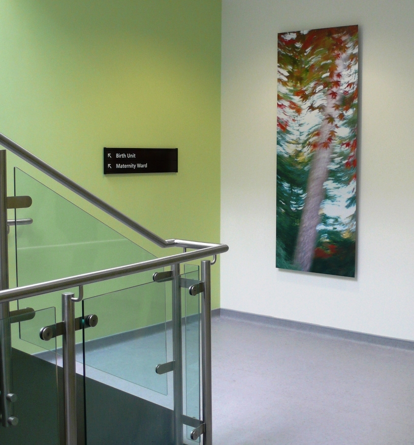 Art in hospitals. Photographic commission by Dominic Pote for Gloucestershire Royal Hospital