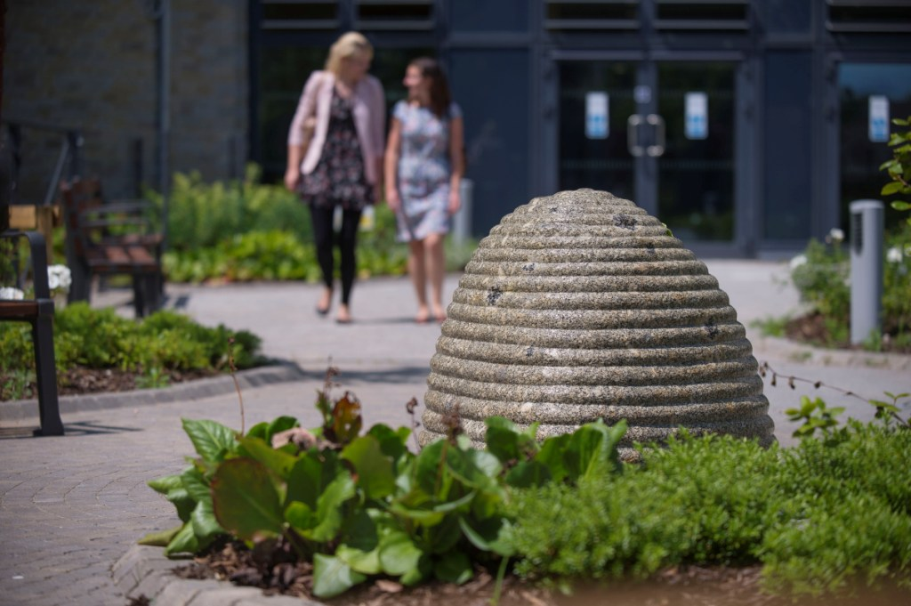 Source by Peter Randall-Page. Photo: Jim Wileman